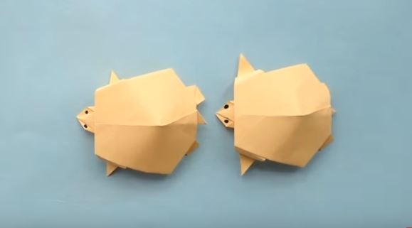 How to make Origami Turtle - YouTube | 321x579